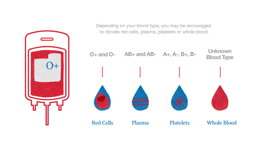 which-blood-type-is-best-for-which-donation